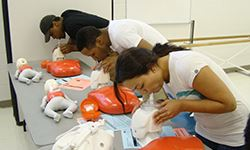 Adults practicing CPR skills