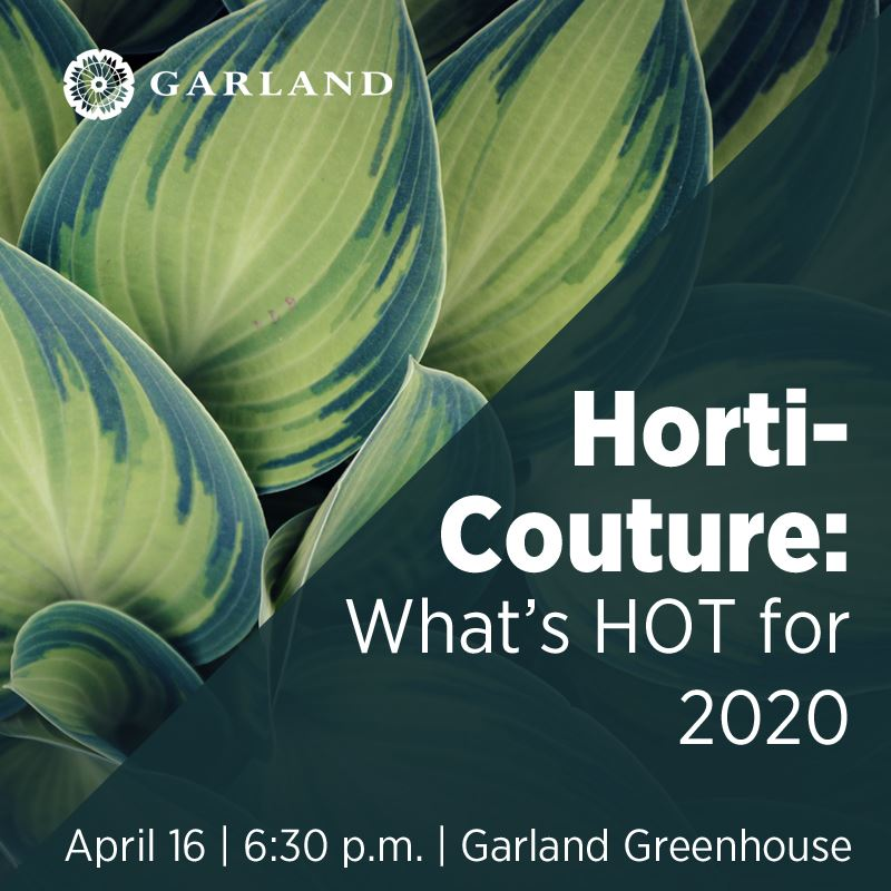 Horti-Couture: What's HOT for 2020 | April 16, 6:30 p.m. | Garland Greenhouse  | City of Garland